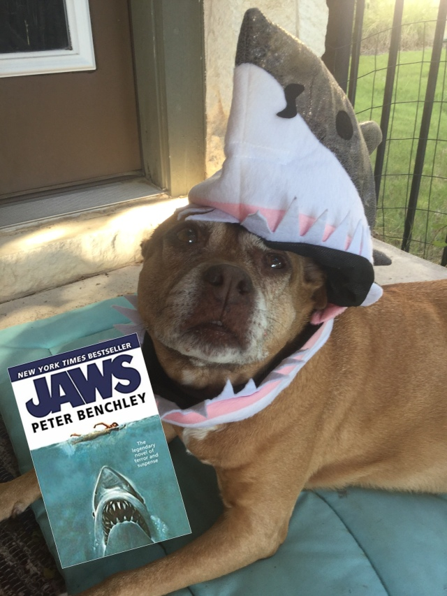 image of Jaws